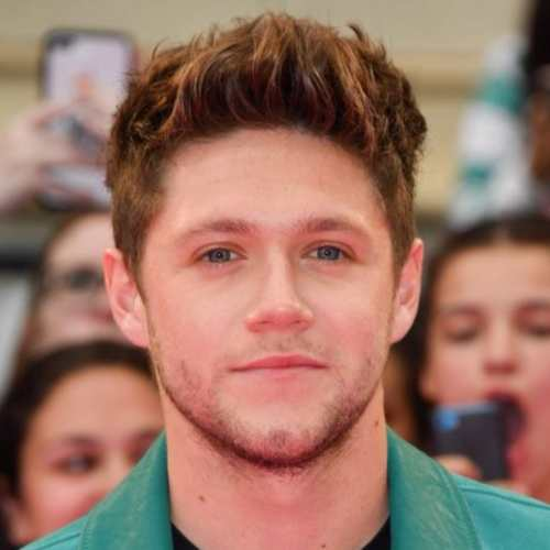 niall horan haircut 2018
