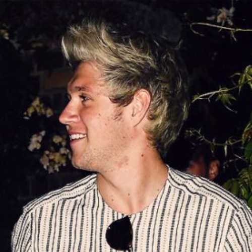 niall horan hairstyle side view