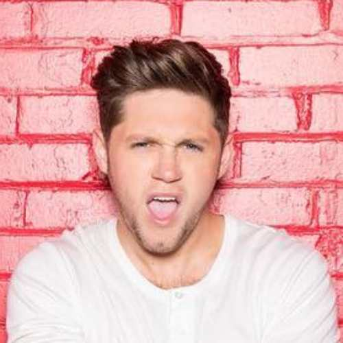 niall horan pompadour hairstyle