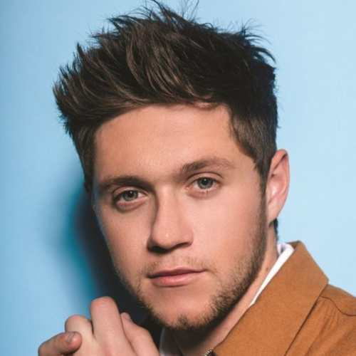 niall horan spiky soft hairstyle
