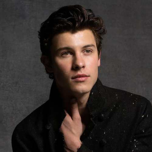 shawn mendes slicked back hairstyles