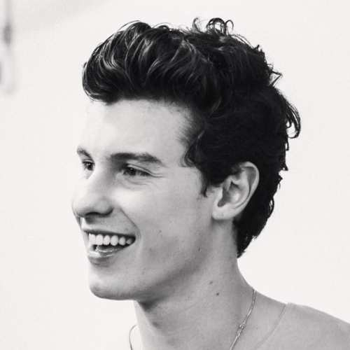 shawn mendes wavy pompadour hairstyle